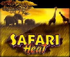 safariheat